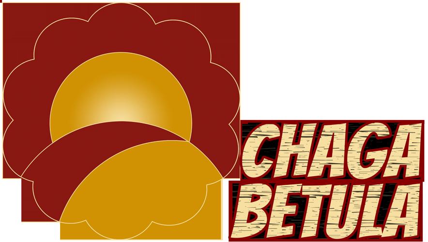 Chaga Betula